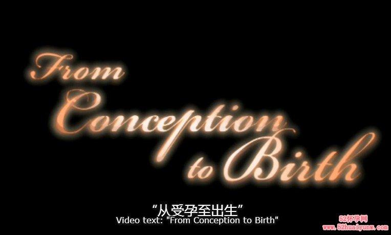 全景呈现婴儿从受孕到出生全过程(视频)